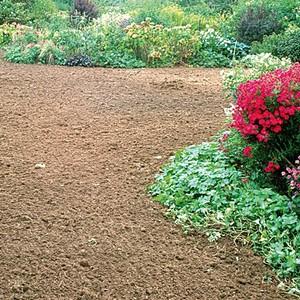 comment planter du gazon
