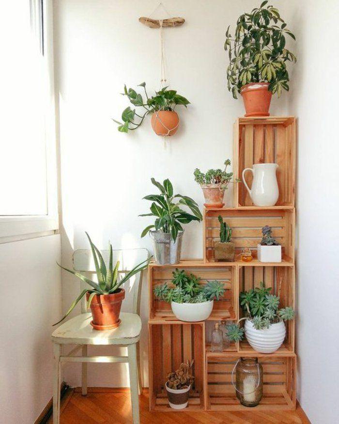 étagère pour plantes d intérieur