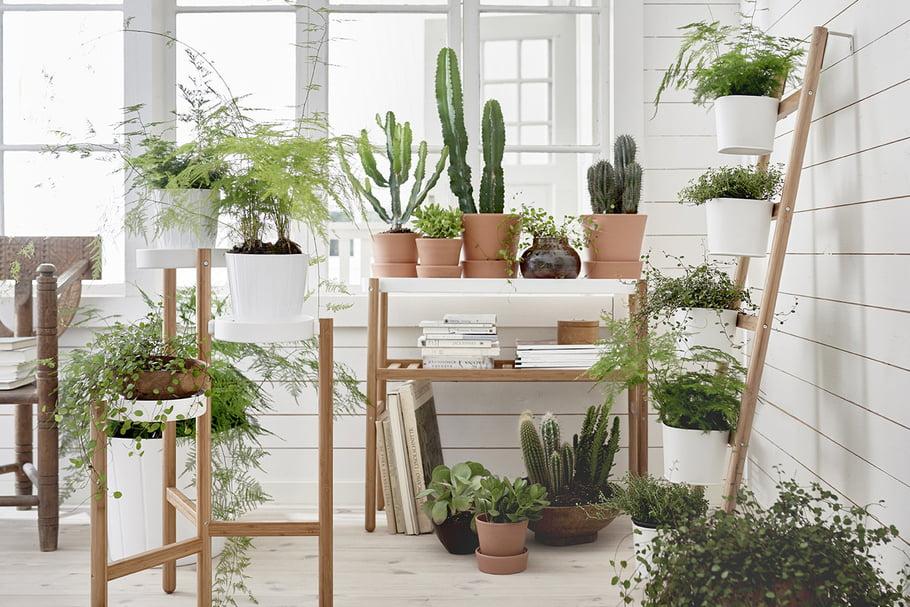 meuble pour plantes d intérieur