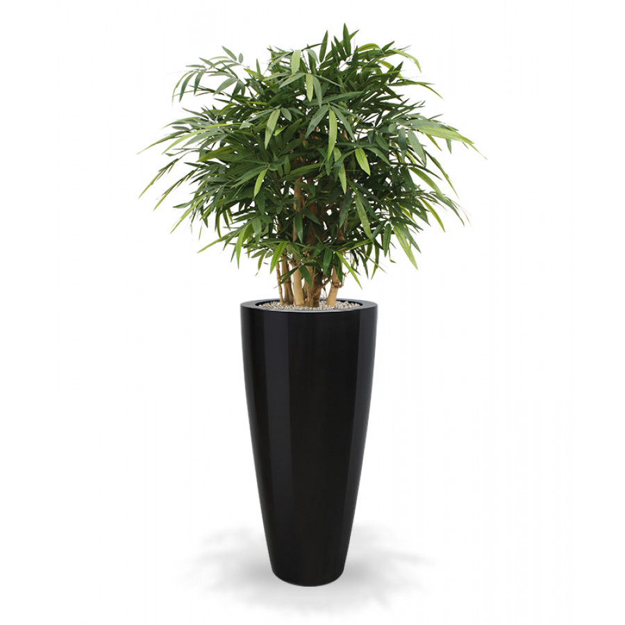 plante artificielle