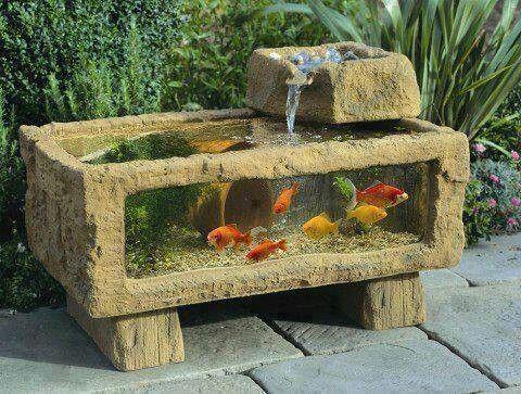 aquarium exterieur