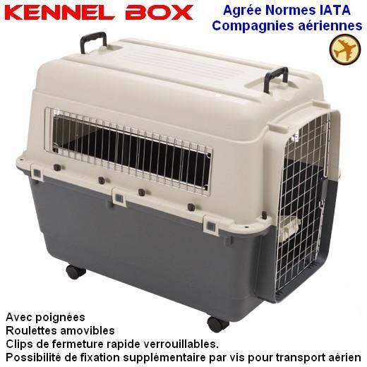 cage transport chien avion