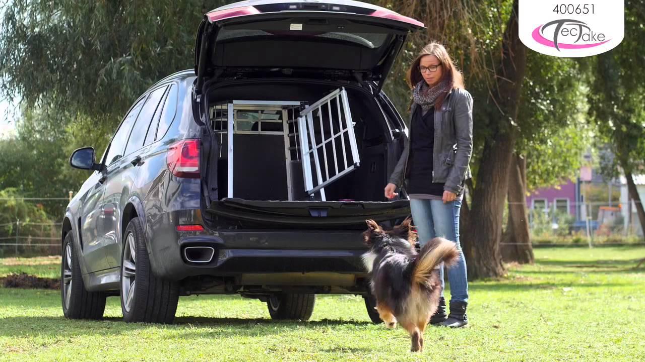 caisse chien voiture