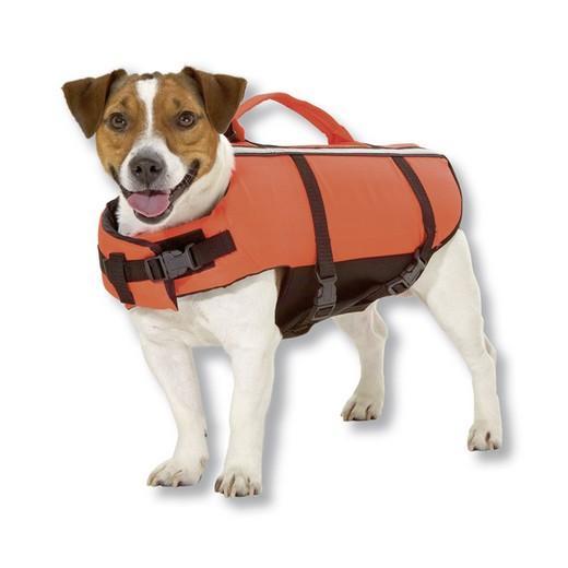 gilet de sauvetage chien
