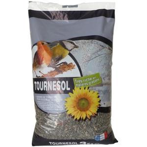 graines de tournesol pour oiseaux en gros