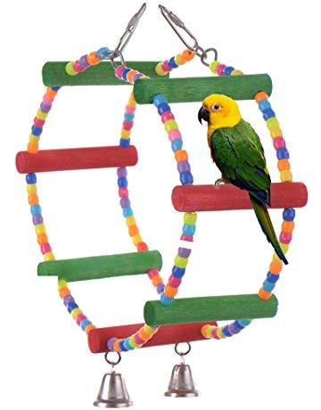 jouet pour oiseau
