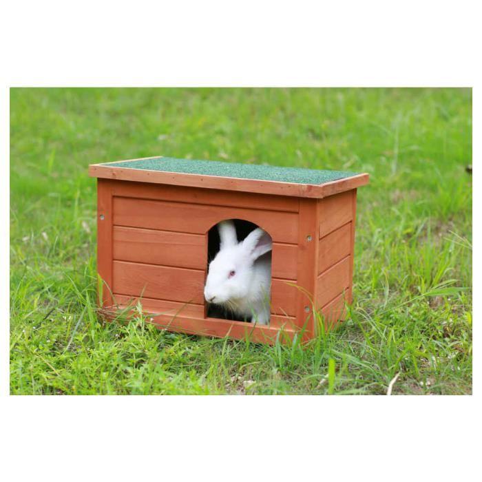 maison de lapin