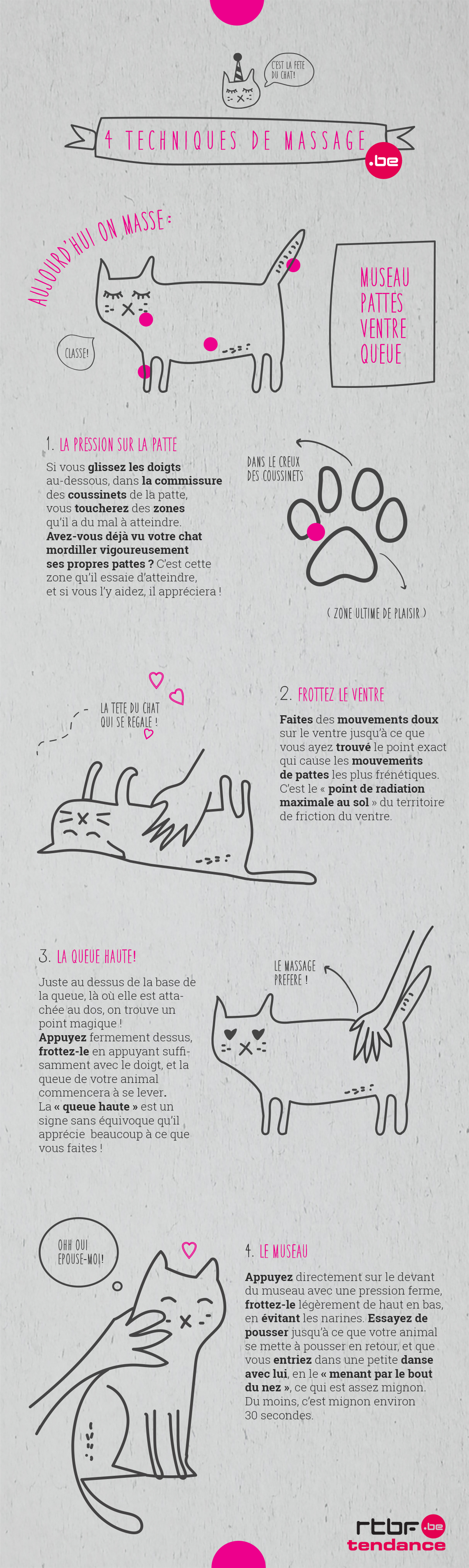 massage pour chat
