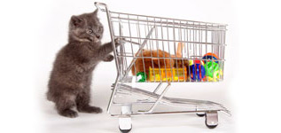 materiel pour chat