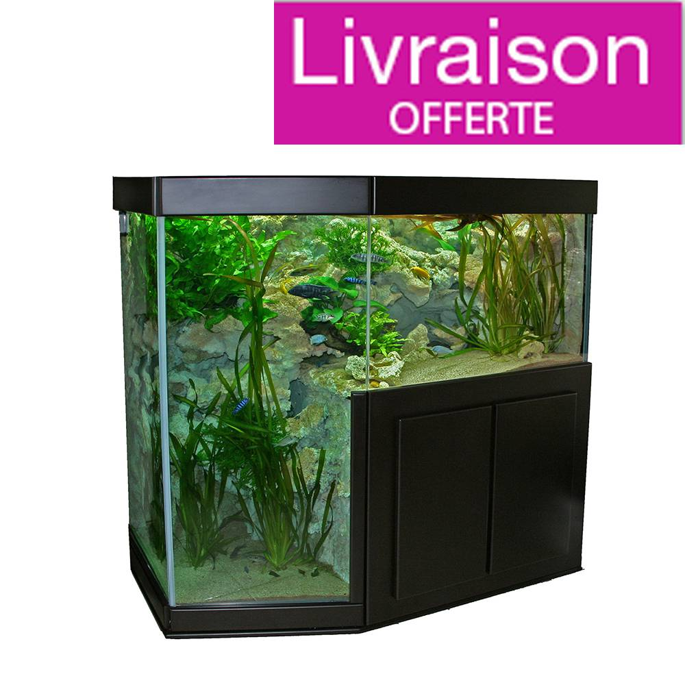 meuble aquarium