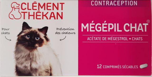 pilule contraceptive pour chat
