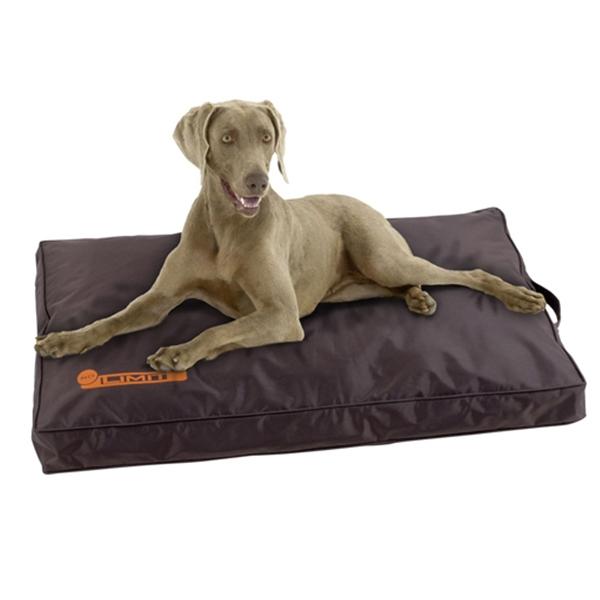 tapis pour chien indechirable