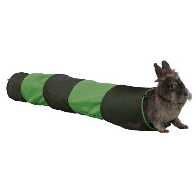 tunnel lapin